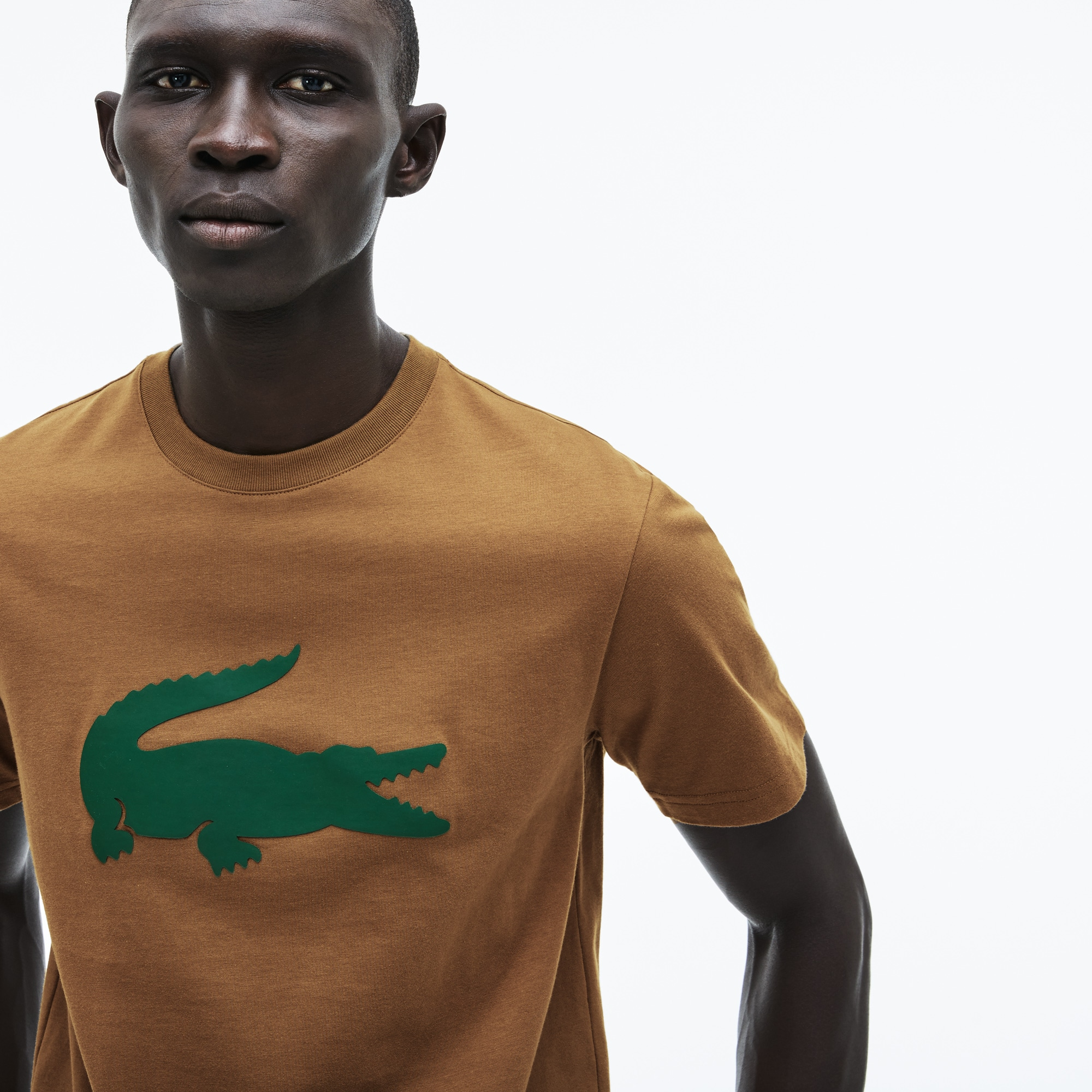 Longues Homme Courtes Manches Lacoste Pour amp; Chandails Shirts T EXqS1wx