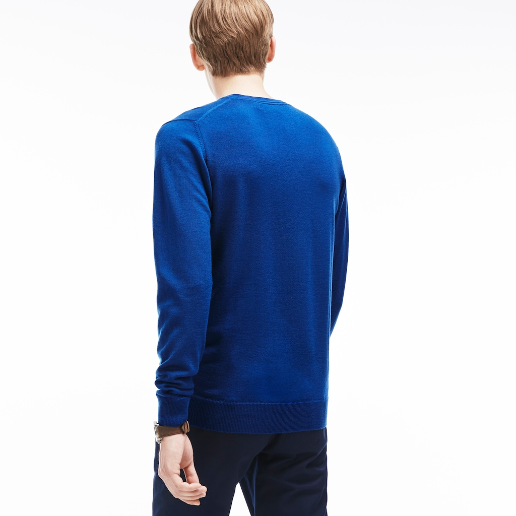 cacf9701f72f Men s V-neck Wool Jersey Sweater